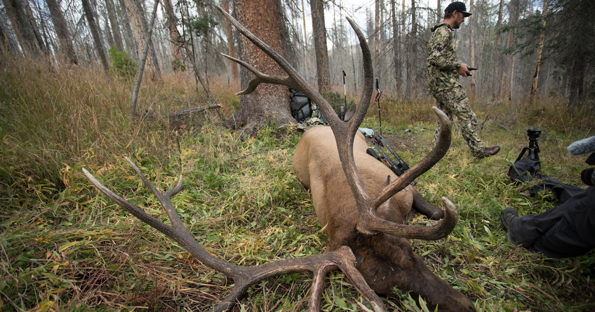 Best Time To Hunt Deer Moon Phase 2020 How to use the equinox and moon phase to time your archery elk