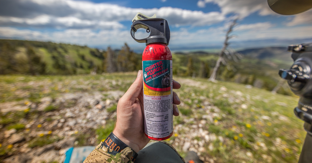 Hunting in grizzly bear country: Sidearm vs bear spray | goHUNT
