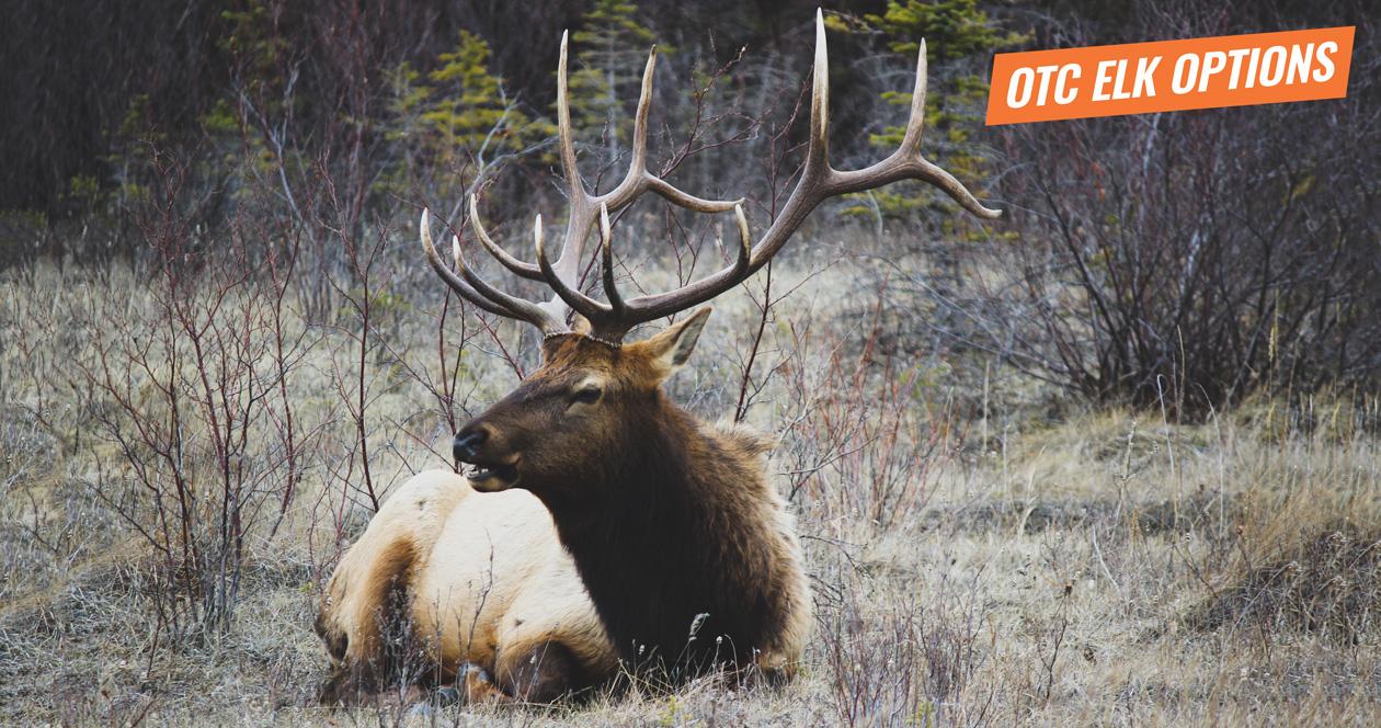 In-depth look at some of the top OTC elk hunts in the West