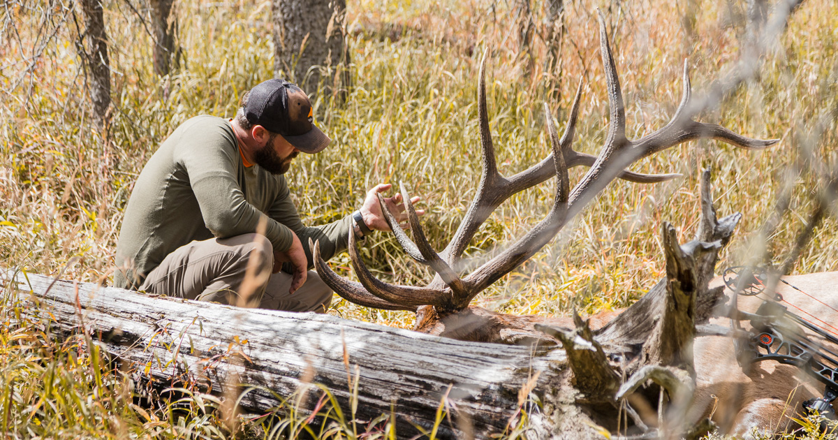 Best Time To Hunt Deer Moon Phase 2019 Planning your 2019 archery elk hunt by using the moon and equinox