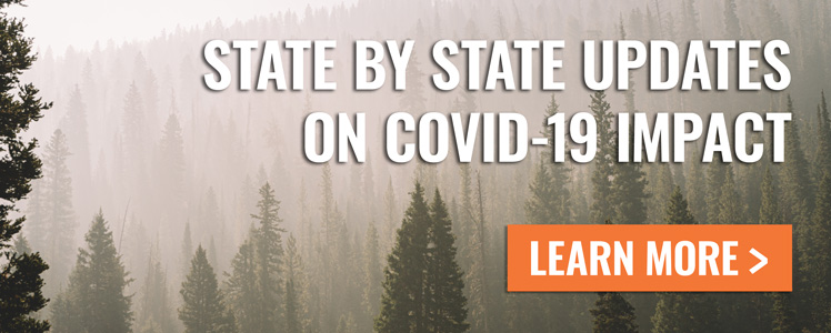State by state updates on COVID-19 impact