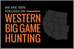 Text: We are 100% focused on big game hunting