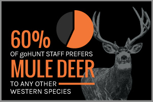 Text: 60% of goHUNT staff prefers mule Deer to any other western species