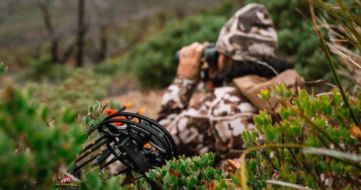 Is a carbon bow worth it?