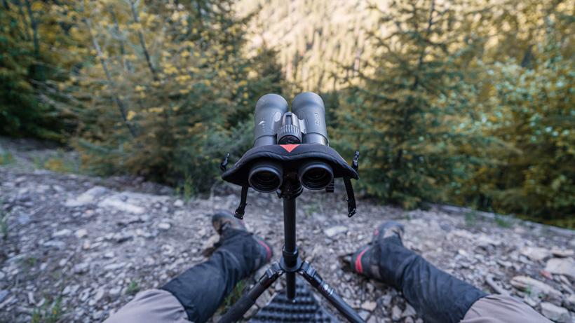12x binoculars for hunting