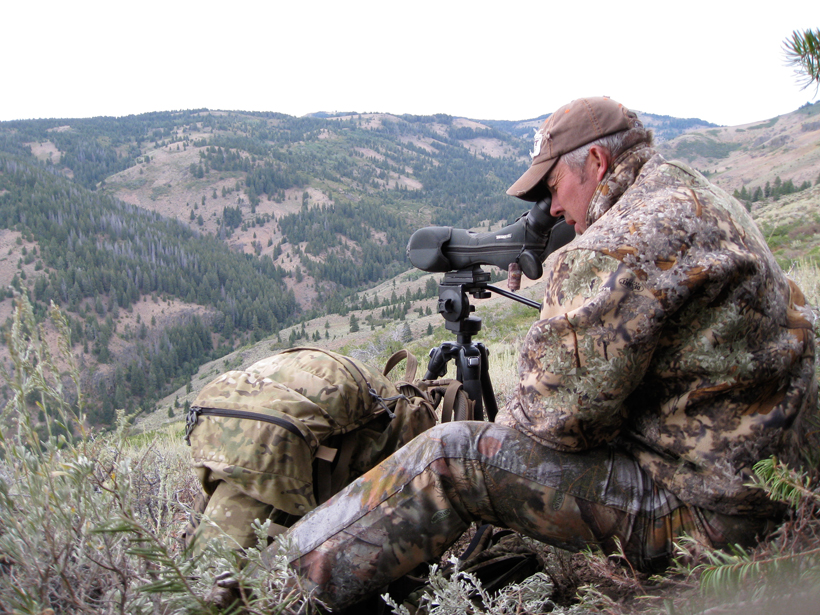 Glassing for elk