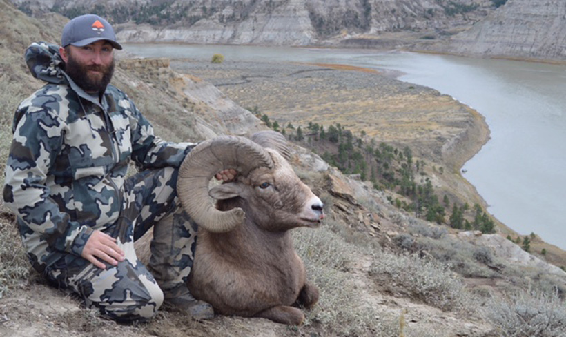 Matt Enrooth Montana bighorn sheep side view