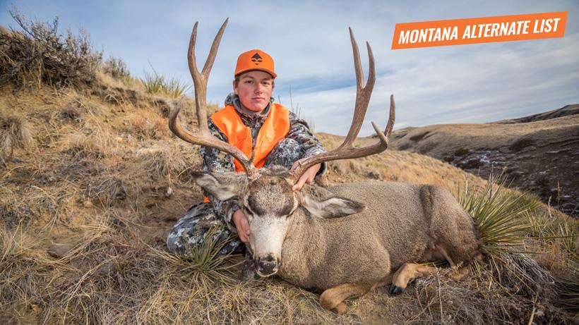 2017 Montana mule deer buck
