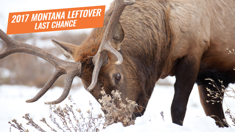 2017 Montana surplus leftover big game tags 2017