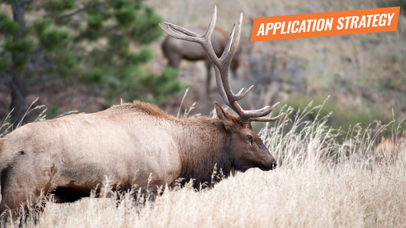 2018 Arizona elk application strategy article
