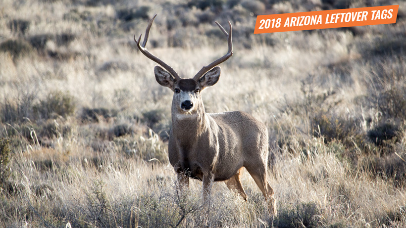 2018 Arizona leftover hunting tag list