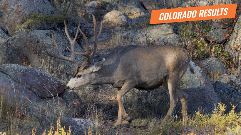 2018 Colorado deer and antelope results