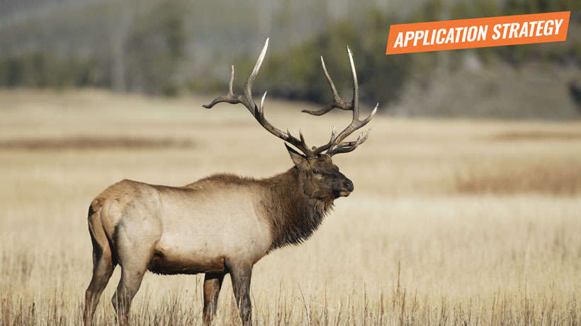 2018 Montana elk application strategy article