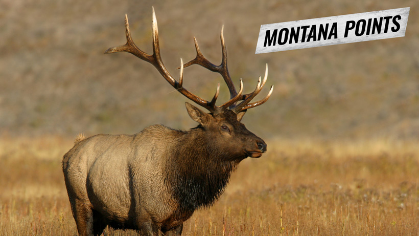 2018 Montana points deadline