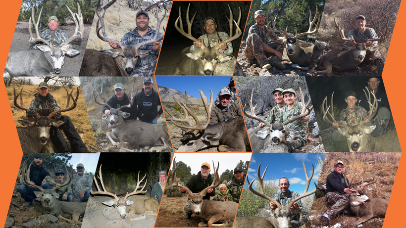 How to apply for the Nevada restricted mule deer guided draw
