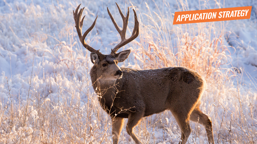 2018 Wyoming deer and antelope application strategy article