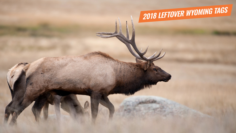 2018 leftover Wyoming hunting license list