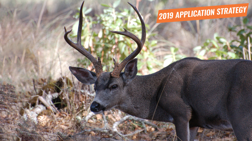 2019 Oregon deer application strategy article
