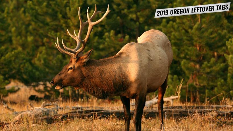 2019 Oregon leftover hunting tag list