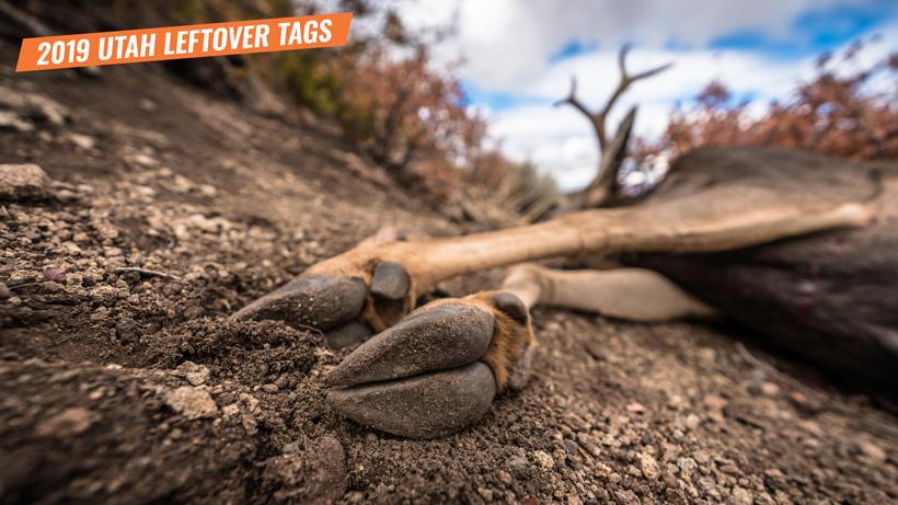 2019 Utah leftover hunting tag list