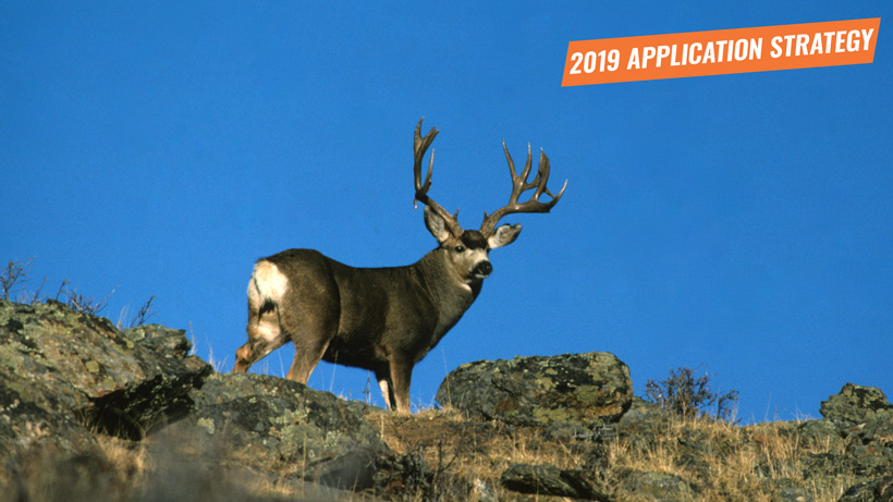 2019 Wyoming deer and antelope application strategy article