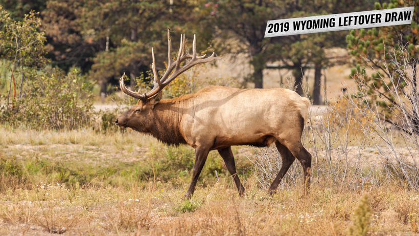 2019 Wyoming leftover hunting tag list