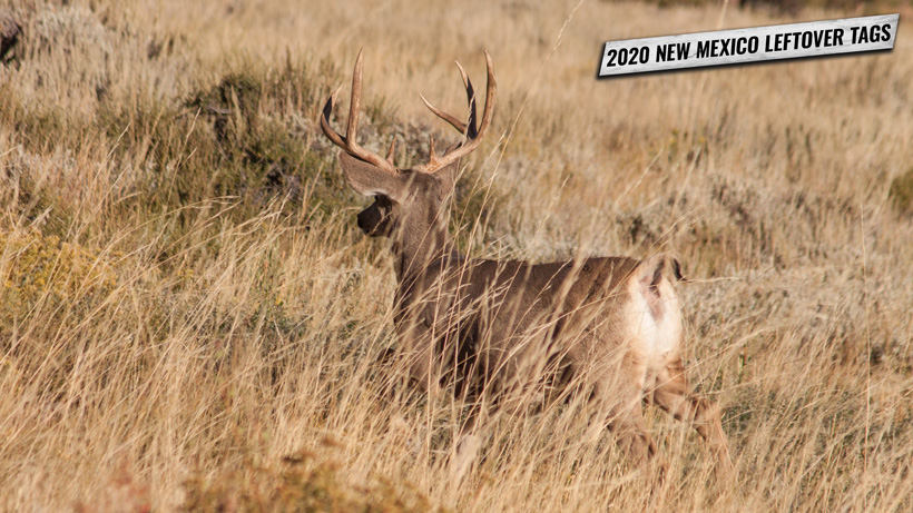 2020 New Mexico leftover hunting tags