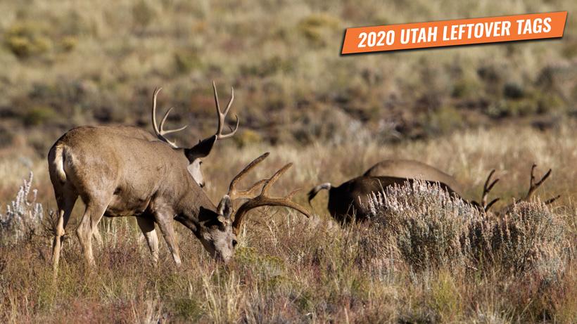2020 Utah leftover hunting permits