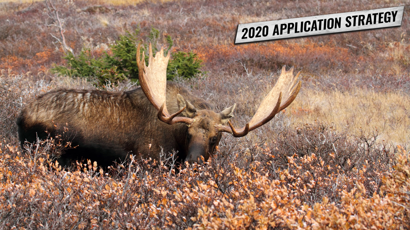 2020 Wyoming Application Strategy