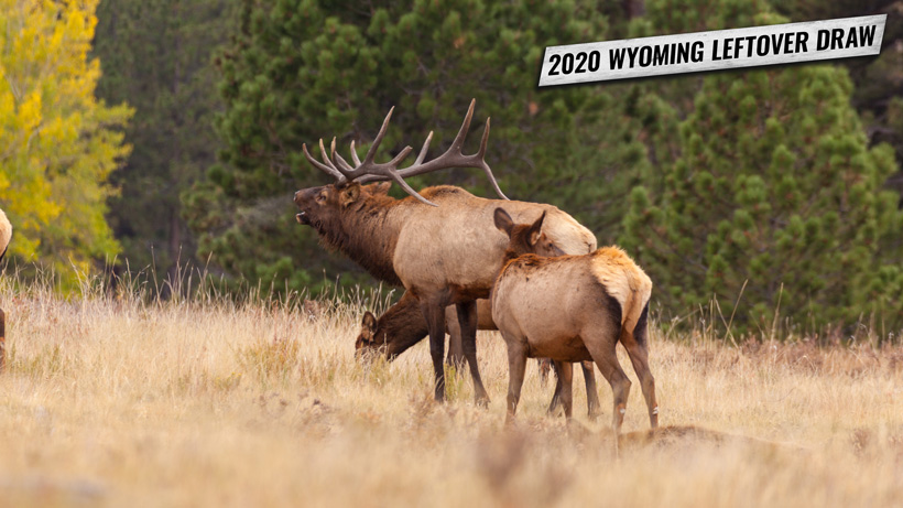 2020 Wyoming leftover hunting tag list