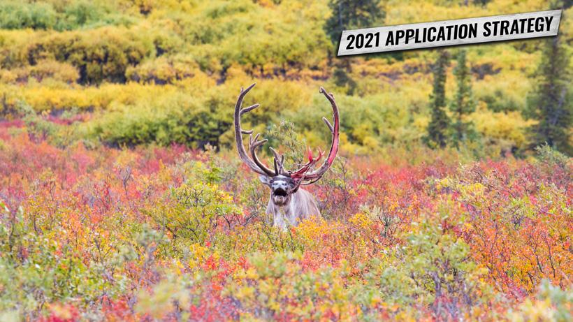 Application Strategy 2021: Alaska
