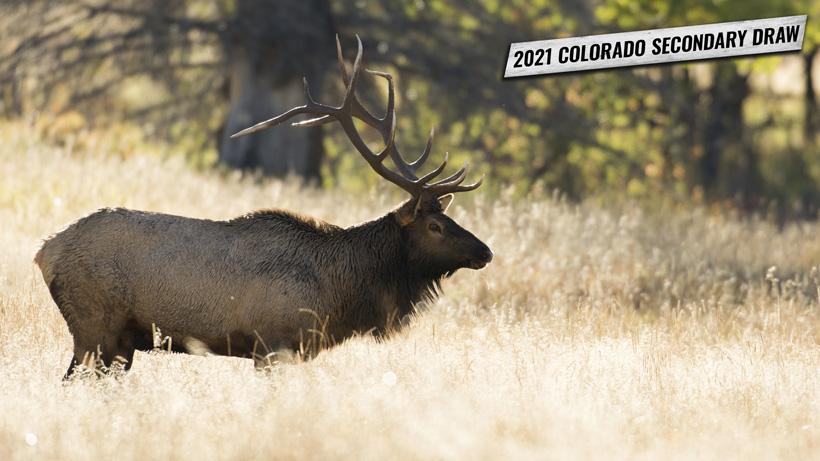 2021 Colorado secondary draw tag information