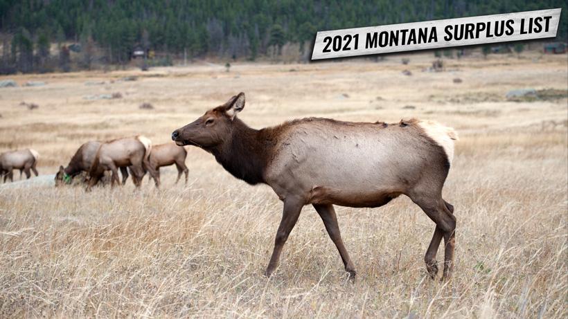 2021 Montana surplus license list information