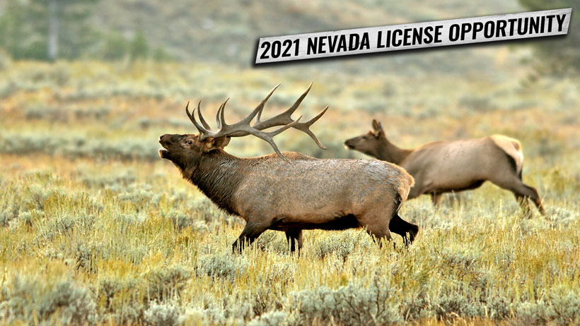 2021 Nevada first come first served license opportunity