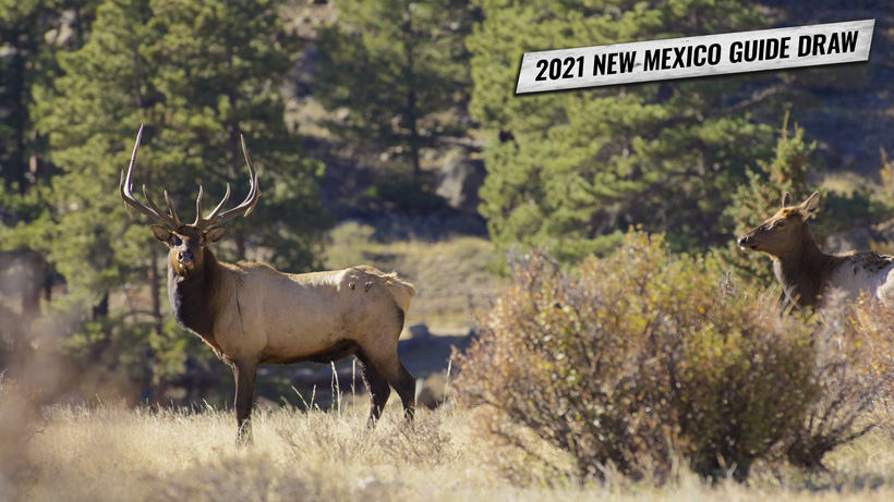 2021 New Mexico guide draw