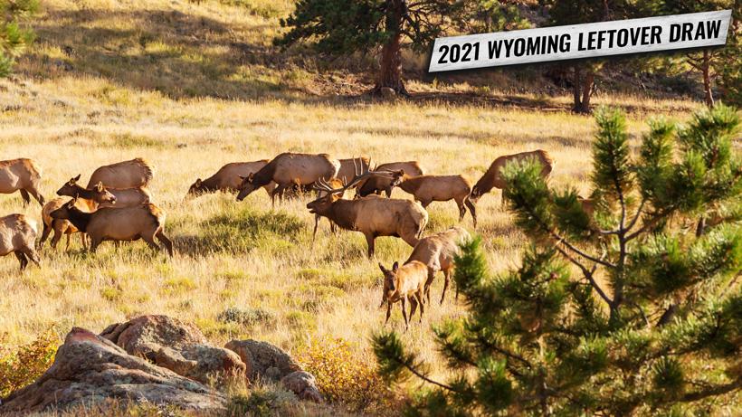 2021 Wyoming leftover draw