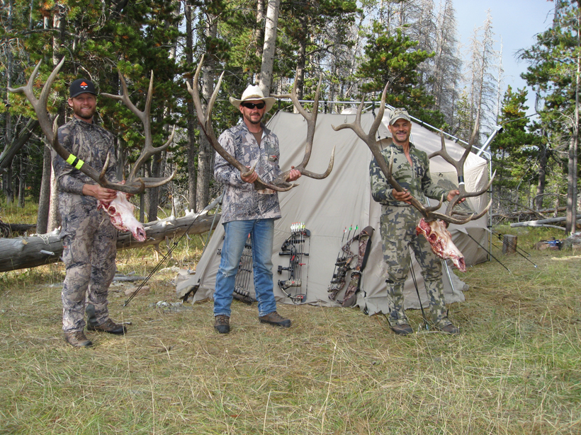 Three friends, three archery bull elk