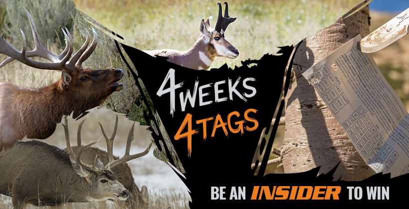 4W4T July INSIDER landowner tag giveaway