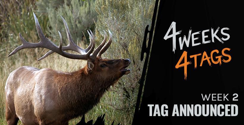 4W4T Week 2 elk tag giveaway