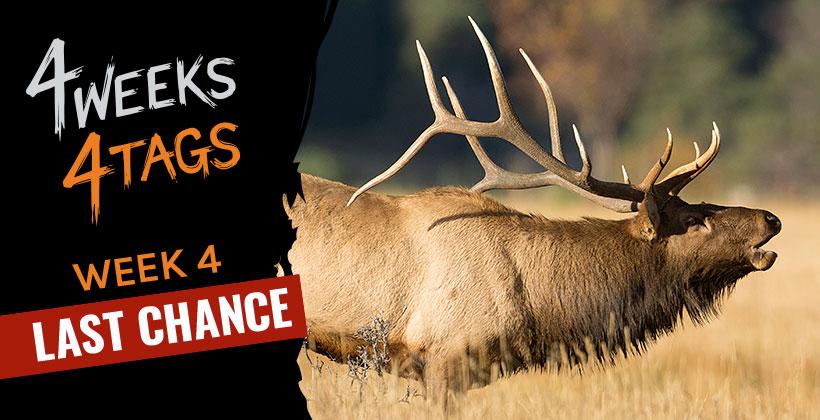 4W4T landowner elk tag giveaway