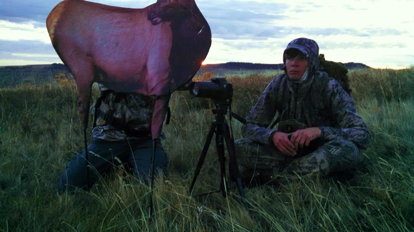 Decoy setup for elk