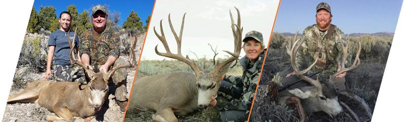 7L Outfitters 2016 mule deer buck sample