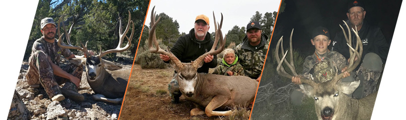 7L Outfitters mule deer photos for Nevada guide draw