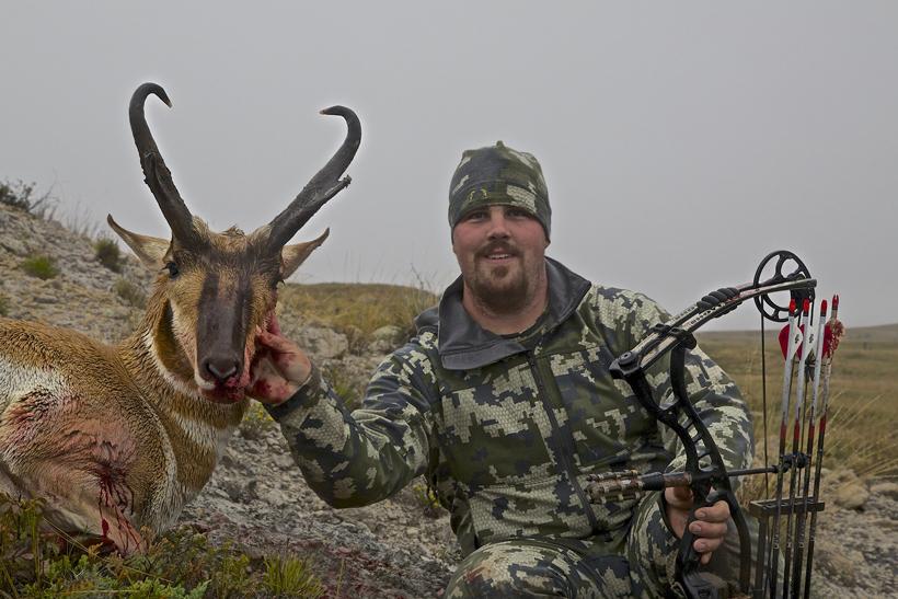 Antelope buck straight on view