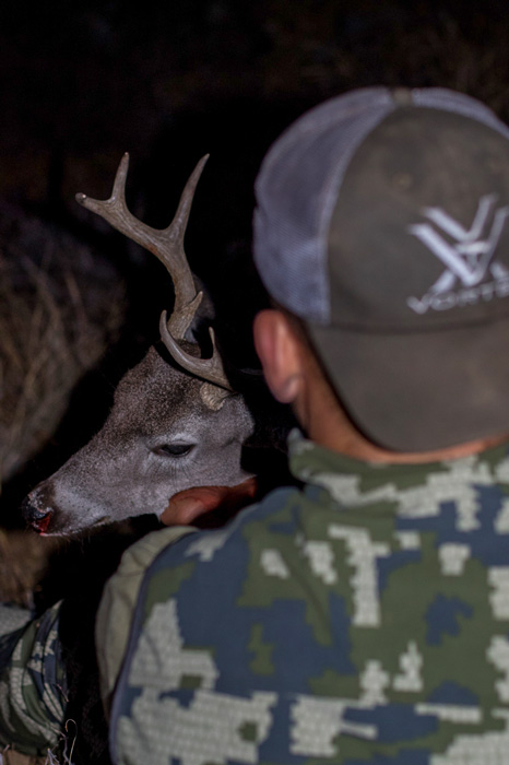 Admiring an Arizona Coues deer