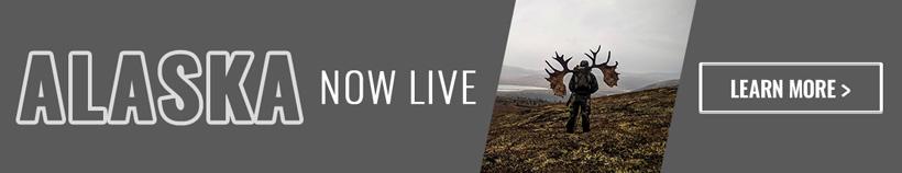 Alaska now live banner