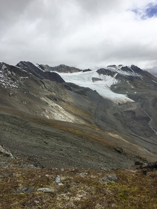 Alpine mountains in British Columbia