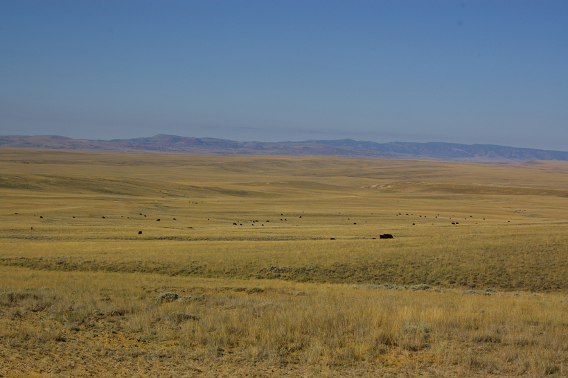 Wyoming antelope hunting scenery