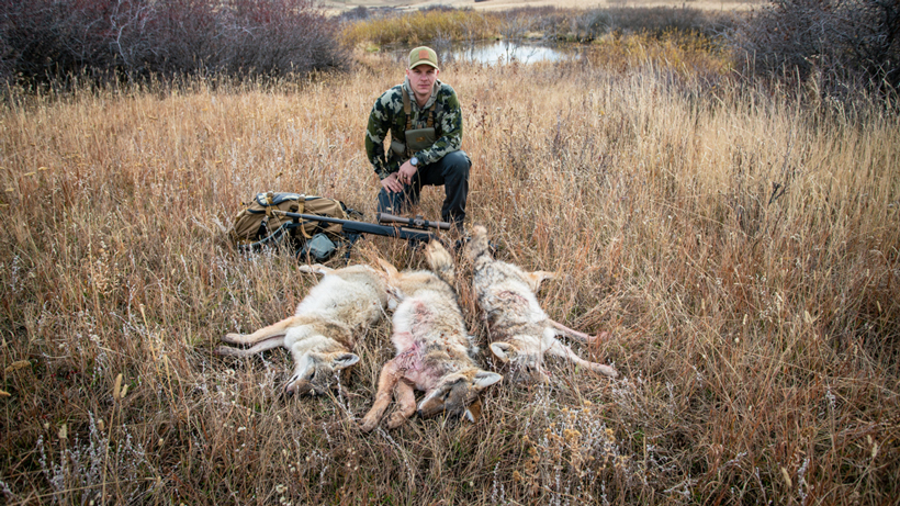 Anthony Wright's successful coyote hunt