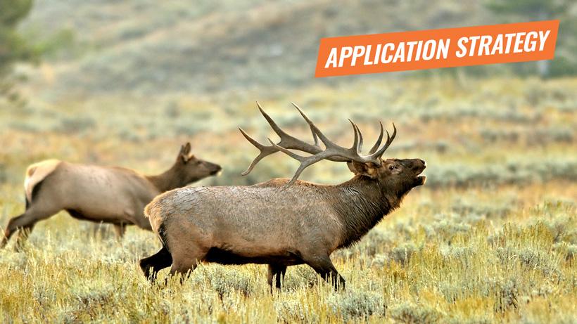 Application strategy 2018 utah elk and antelope